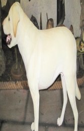 Labrador standing - Yellow (JR 2950)