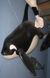 Orca Whale Big (Half) Wall Decor (JR 2542)