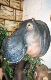 Hippo Head (JR 150262) - Thumbnail 02