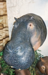 Hippo Head (JR 150262) - Thumbnail 03
