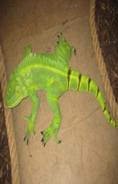 Iguana 3ft long (JR 2160) - Thumbnail 03