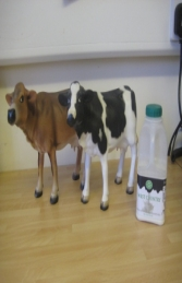 Mini Cow - Friesian (JR 090056)	 - Thumbnail 03
