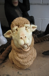 Merino Sheep Head 3 (JR 110046) - Thumbnail 01