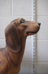 Daschund Dog - Brown (JR 110105br) - Thumbnail 02