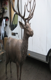Red Deer Stag in Bronze (JR 110116b)