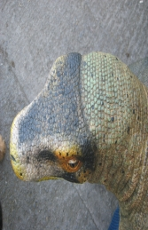 Komodo Dragon Small 5.5ft (JR 120001) - Thumbnail 03