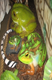 Green and Golden Bell Frog - Giant (JR 100017) - Thumbnail 03
