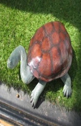 Long Neck Turtle (JR 100114) - Thumbnail 03