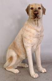 Labrador sitting - Yellow (JR 110098y) - Thumbnail 01