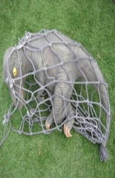 Baby T Rex in Net (JR R-195) - Thumbnail 02
