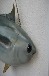 Tuna Fish - Closed Mouth (JR FSC1293CM)	 - Thumbnail 02