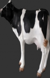 Mini Cow - Friesian (JR 090056)	 - Thumbnail 01