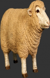 Merino Sheep head up - Small (JR 110126) - Thumbnail 01