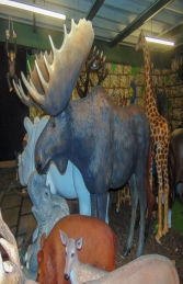 Moose life-size (JR 170211)