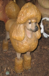 Poodle Dog - Brown (JR 2987) - Thumbnail 02