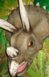 Triceratops Head (JR 2308)