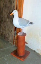 Seagull on Mooring Bollard (JR 130088) - Thumbnail 03