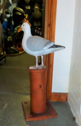 Seagull on Mooring Bollard (JR 130088) - Thumbnail 02