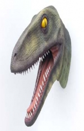 Raptor Dinosaur Head (JR 2307) - Thumbnail 03