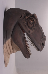T Rex Head Jumbo (JR 100015) - Thumbnail 03