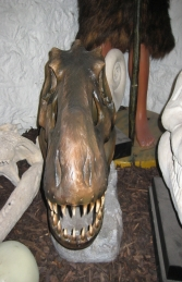 T Rex Skull Head (JR 2440) - Thumbnail 02