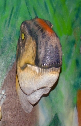 Theropod Head Wall Decor (JR 180097) - Thumbnail 03