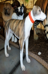 Lurcher Dog (JR 3003)