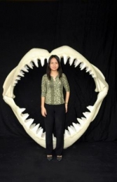 Shark Jaws Large (JR 2456) - Thumbnail 03