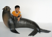 LIFESIZE SEAL / SEA LION